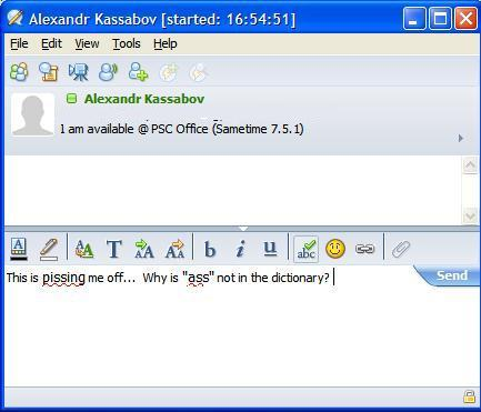 SameTime chat window